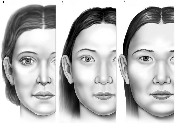 The front views of the average North American white woman (A), the attractive Korean-American woman (B) and the average Korean-American woman (C).