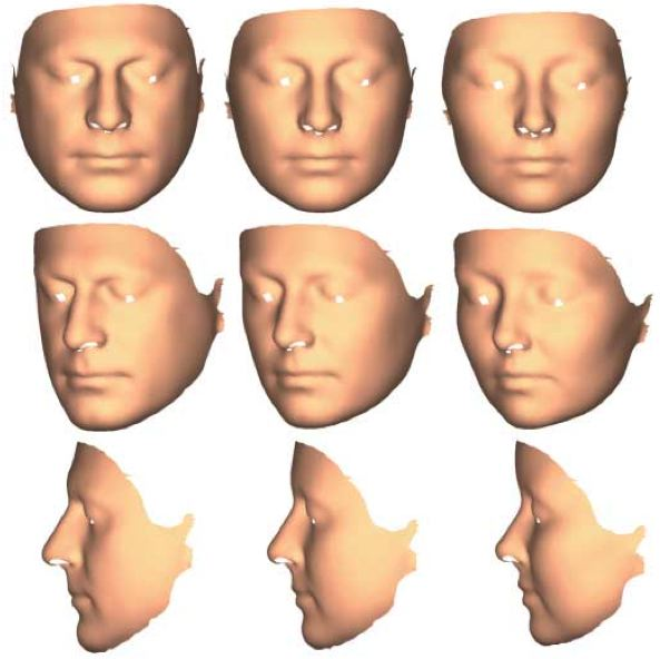 Facial sexual dimorphism revealed by 3D laser scanning and geometric morphometrics.