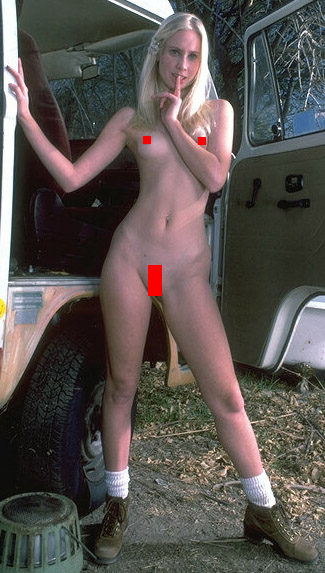 A slender woman with small breasts that nevertheless has feminine pelvic and torso proportions due to a feminine skeletal structure.
